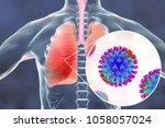 flu viruses in human lungs  3d...   Shutterstock . vector #1058057024