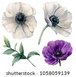 watercolor white and violet...   Shutterstock . vector #1058059139