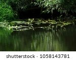 moscow region  russia.... | Shutterstock . vector #1058143781