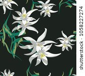 trendy floral pattern in the... | Shutterstock .eps vector #1058227274