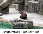 prague  czech republic   july 5 ... | Shutterstock . vector #1058294405