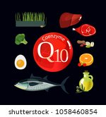 coenzyme q10. healthy eating.... | Shutterstock .eps vector #1058460854