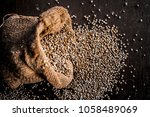 close up of pearl millet or... | Shutterstock . vector #1058489069