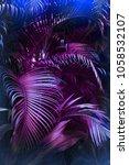 vivid purple palm leaves... | Shutterstock . vector #1058532107