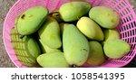 mango in basket | Shutterstock . vector #1058541395