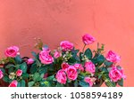 Stock photo pink artificial flowers on orange wall in resort thailand 1058594189