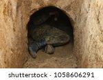 archaeologist in corridor... | Shutterstock . vector #1058606291