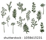 willow and palm tree branches ... | Shutterstock .eps vector #1058615231