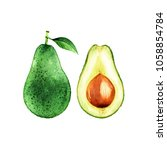 isolated watercolor avocado on...   Shutterstock . vector #1058854784