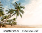 vintage nature background  ... | Shutterstock . vector #1058953259