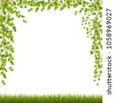 grass and ivy on white... | Shutterstock .eps vector #1058969027