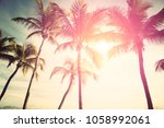 palm trees against sunny... | Shutterstock . vector #1058992061