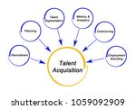 talent acquisition strategy   Shutterstock . vector #1059092909
