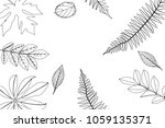 hand drawn frame of leaves and... | Shutterstock .eps vector #1059135371