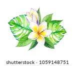 frangipani plumeria flowers...   Shutterstock . vector #1059148751