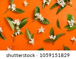 orange paper background with... | Shutterstock . vector #1059151829