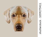 labrador retriever low poly... | Shutterstock .eps vector #1059275411