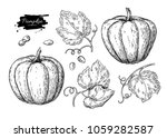 pumpkin vector drawing set.... | Shutterstock .eps vector #1059282587