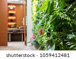 the plant and sofa of the... | Shutterstock . vector #1059412481