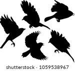illustration with set of flying ... | Shutterstock .eps vector #1059538967