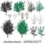 several species of trees and... | Shutterstock .eps vector #1059619277