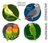 colorful parrot icon set in... | Shutterstock .eps vector #1059661769