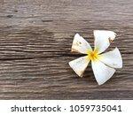 selected focus. white flower or ...   Shutterstock . vector #1059735041