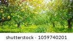 lemon garden  summer background | Shutterstock . vector #1059740201