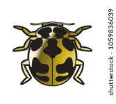 black spotted gold color lady... | Shutterstock .eps vector #1059836039