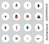 set of insect realistic symbols ...   Shutterstock .eps vector #1059999419