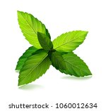 fresh mint leaf. vector menthol ... | Shutterstock .eps vector #1060012634