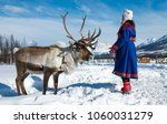 northern norway  a traditional... | Shutterstock . vector #1060031279