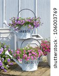 Decorative Watering Cans With...