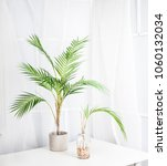 a artificial palm plant on a... | Shutterstock . vector #1060132034