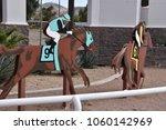Turf Paradise Horse Racing...