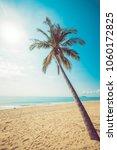 seascape of beautiful tropical... | Shutterstock . vector #1060172825