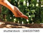 agriculture. growing plants.... | Shutterstock . vector #1060207085