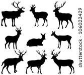 Deer Collection   Vector...
