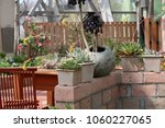 planting succulent plants | Shutterstock . vector #1060227065