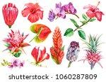 Set Tropical Plants  Flora...