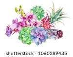 tropical plants  flowers orchid ... | Shutterstock . vector #1060289435