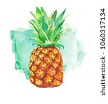 pineapple and colorful splash... | Shutterstock . vector #1060317134