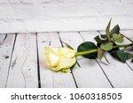 bright white yellow rose on... | Shutterstock . vector #1060318505