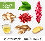set of ginger root and red... | Shutterstock .eps vector #1060346225