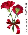 bouquet of red carnation flower ... | Shutterstock .eps vector #1060357634