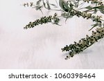 vitex agnus castus dried flower ... | Shutterstock . vector #1060398464