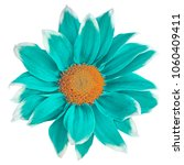 flower cyan white chrysanthemum ... | Shutterstock . vector #1060409411