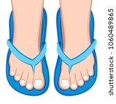 female feet in sandals   vector ... | Shutterstock .eps vector #1060489865