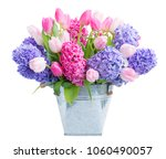 hyacinth pink and blue hyacinth ...   Shutterstock . vector #1060490057