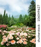 Stock photo rose garden 106049627